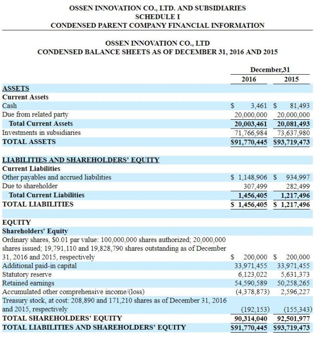 OSN Parent Balance Sheet