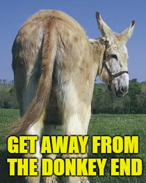 Donkey End